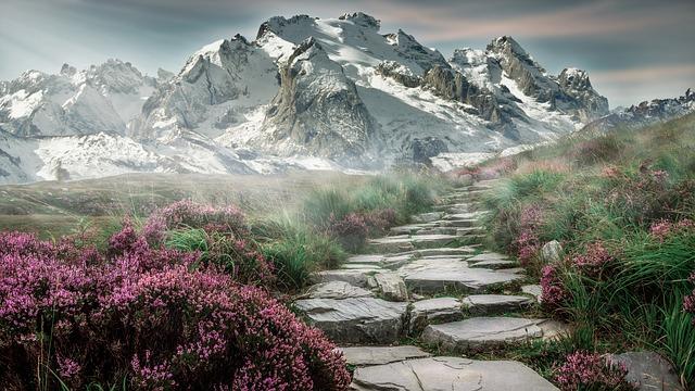 ¿Cuál de los Dos Caminos Prefiere Usted?